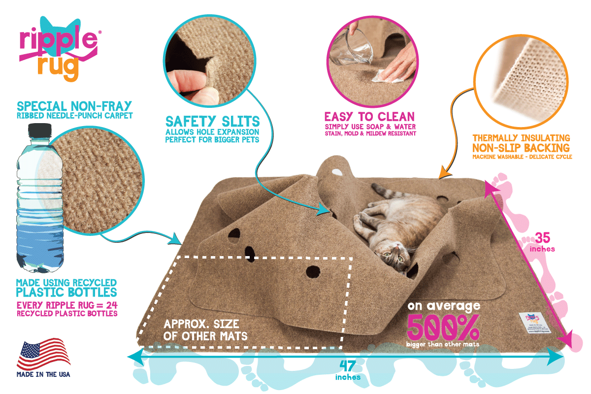 Your Furry Friend's Preferred Enrichment System