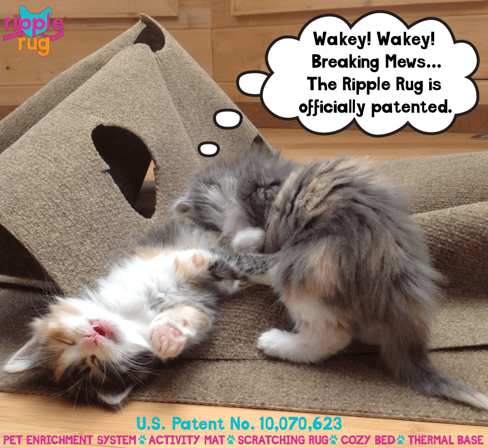 The Ripple Rug The Most Versatile Cat Activity Mat Ever